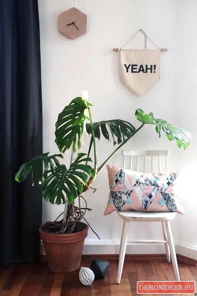 Тренды в интерьере 2017 – растение монстера