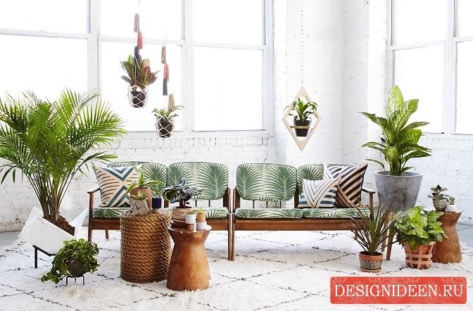 Как разнообразить домашний интерьер с помощью растений